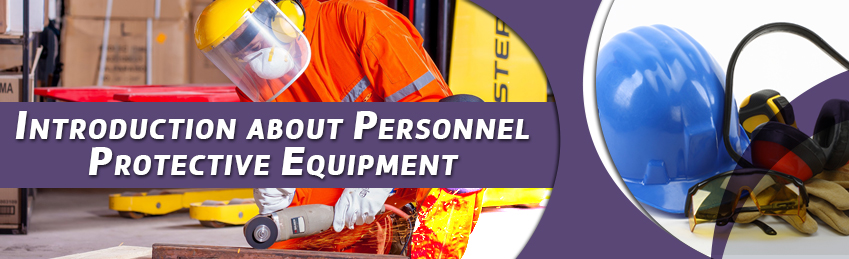 Inhouse Corporate Training Introduction about Personnel Protective Equipment