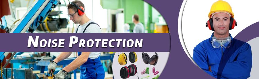 Inhouse Corporate Training Noise Protection