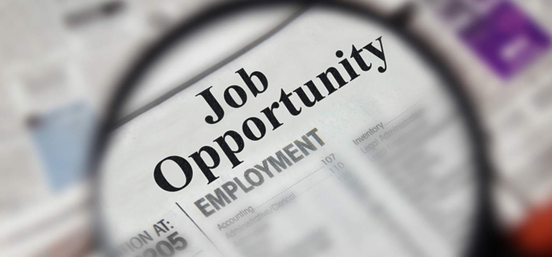 India Offers Huge Job Opportunities In Hse Field Green