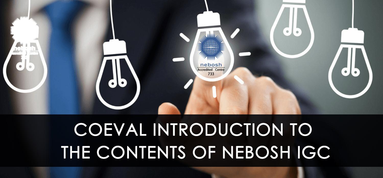 PEDAGOGICS OF NEBOSH IGC : COEVAL INTRODUCTION TO THE CONTENTS OF NEBOSH IGC
