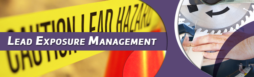 inhouse corporate training Lead Exposure Management