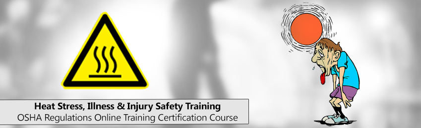 Safety Diploma Course